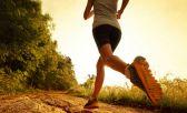 hábitos de entrenamiento