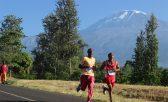 Maratona de kilimanjaro