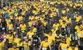 Com o objetivo de promover o uso da bicicleta