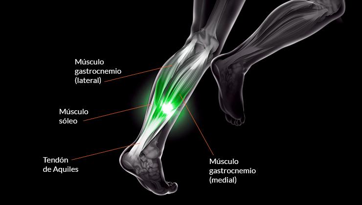 dolor muscular en la pantorrilla detrás de la pierna