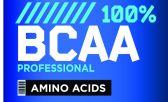 Las principales funciones de los BCAA son est