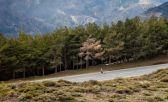 El Maratón de Granada será cuesta abajo