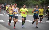 ¿Cuántos maratones puedes correr en un año?