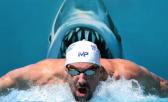 Michael Phelps nadó contra un tiburón blanco