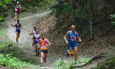 Mundial de Trail